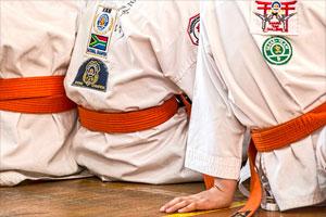 Arts martiaux avec l'OMS de Rezé